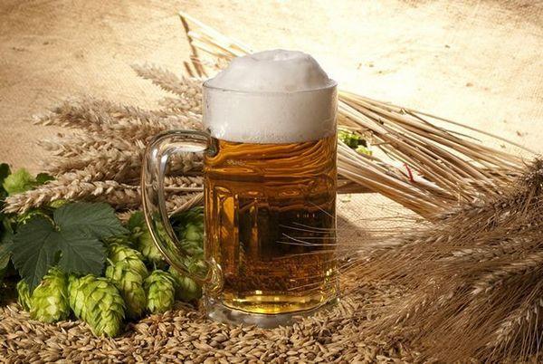 Čtyři hlavní složky piva jsou slad, chmel, kvasnice a voda.