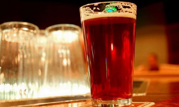 Ce sunt produsele de hamei în bere?