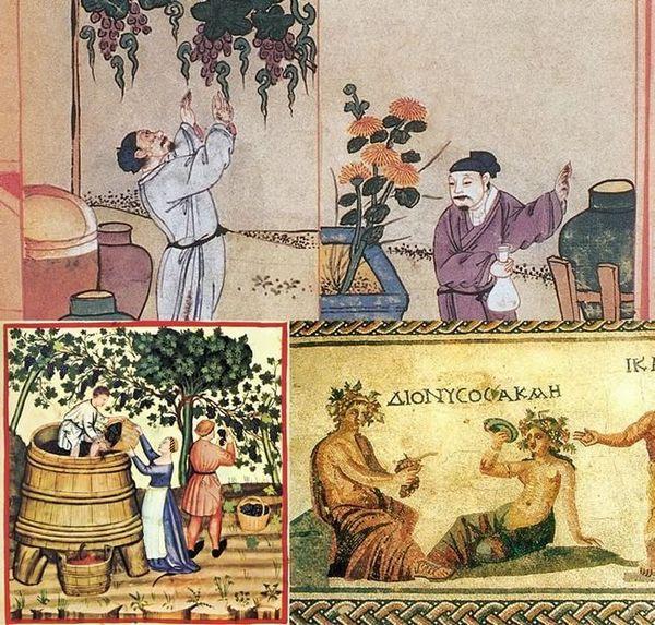 Виноробство в давнину