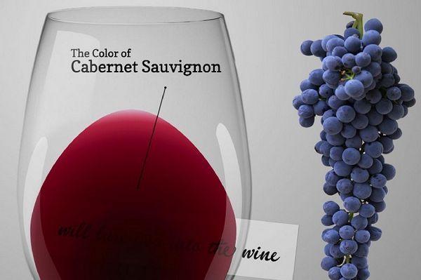 fotografie de culoare cabernet sauvignon de culoare vinului