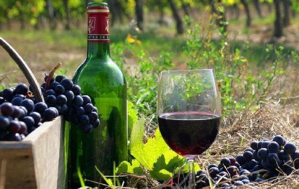 Cabernet Sauvignon Wine Photo