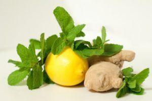 citronový křen a zázvor