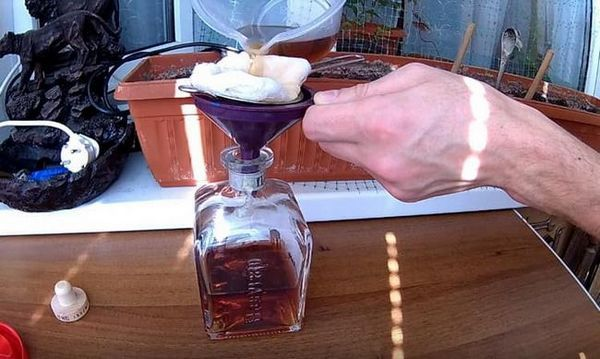 Детальний рецепт приготування коньяку з горілки з чорносливом в домашніх умовах