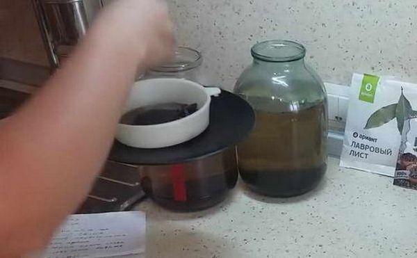 kako napraviti konjak po domaćem receptu od mjesečine