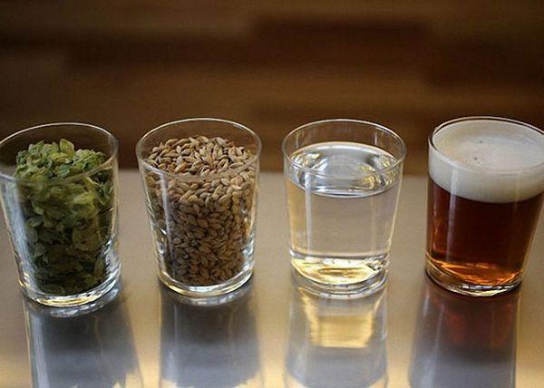 Klasický pivní recept sladový chmel a voda
