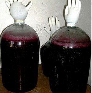 бродіння вина
