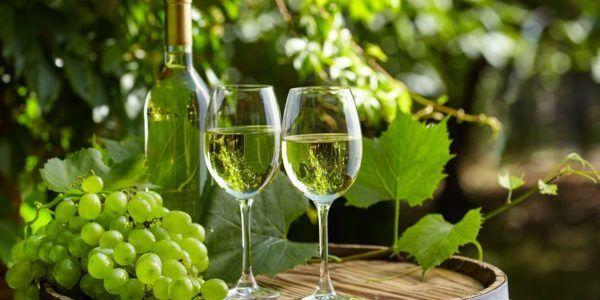 білий виноград