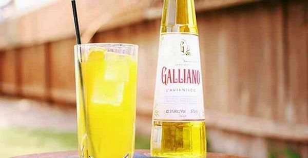 Lichior Galliano cum să aleagă originalul
