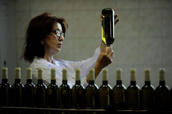 контрола на квалитетот на виното
