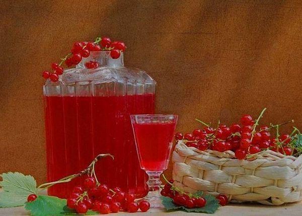 Tinctură de coacăze roșii pe vodcă
