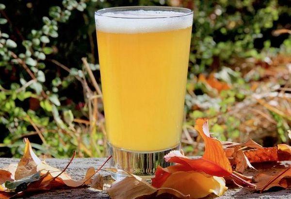 Nefiltrované pivo: historie, jak si vyrobit, jaký je rozdíl, jaké značky vyzkoušet