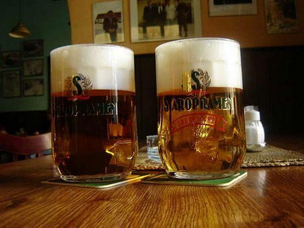 Як вибрати пиво Старопрамен