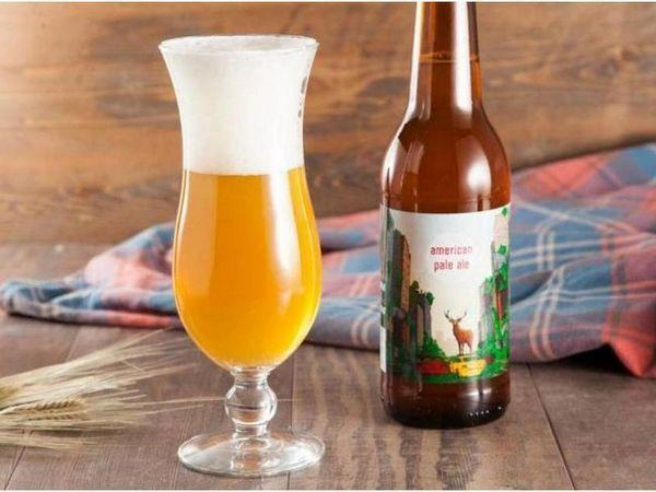 Пиво Американ Пейл ель (Apa)