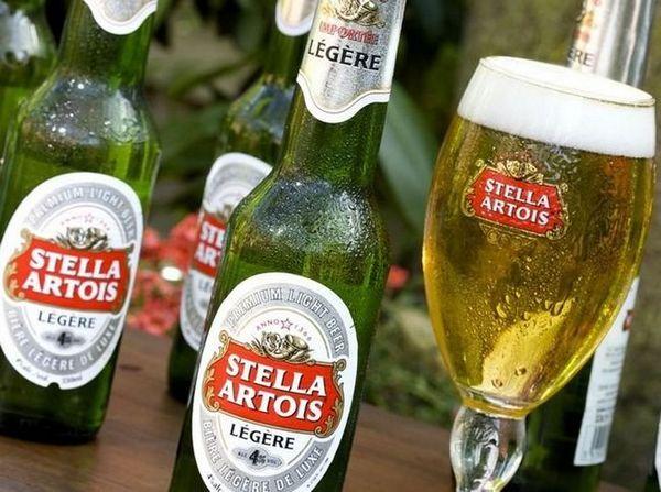 Пиво Cтелла Артуа: історія, види та смак + як пити