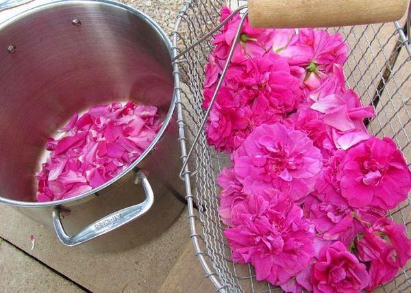 Акуратно обірвемо пелюстки троянд з бутонів