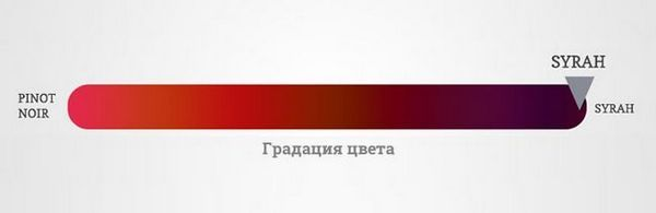Боја вина Сирах